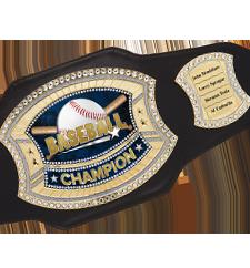 Belts Perpetual Belts
